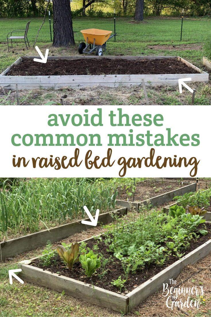 7 Common Mistakes In Raised Bed Gardening Backyard Vegetable