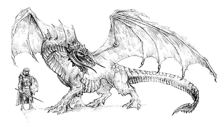 Black Dragon from Neverwinter Nights