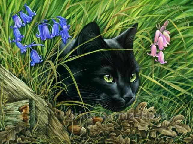 Black Cats The Hunter Irina Garmashova Cats