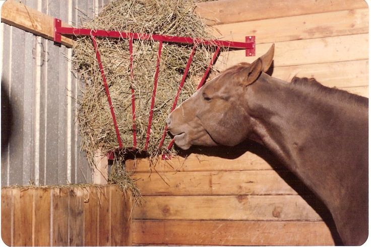 10 Best Images About Horse Equipment By Cmi On Pinterest