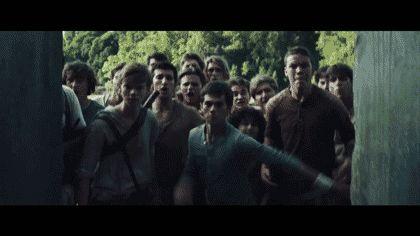 'The Maze Runner': A Spoiler-Filled Breakdown Of The Trailer In GIFs | MTV.com