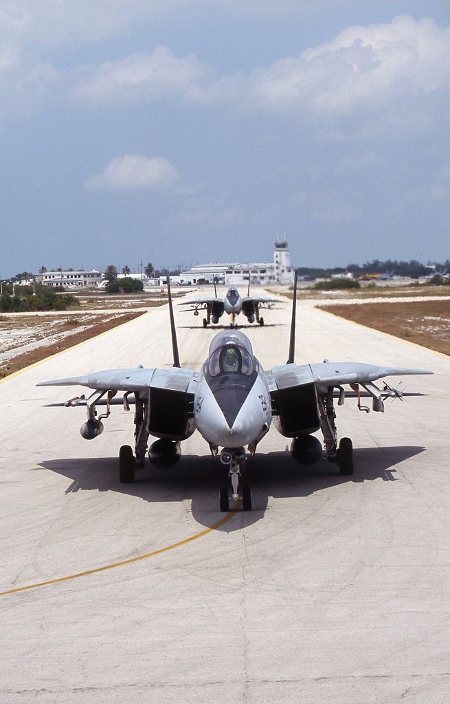 US Navy Grumman Tomcats of VX-9 'The Vampires' at Key West 2004. The F-14 Tomcat... awesome bird but a real pain to work on!