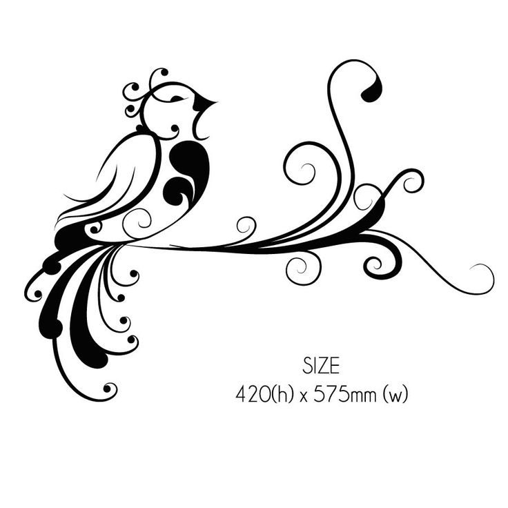 Curly Tail Bird Floral Wall Sticker Decal   Wall Art