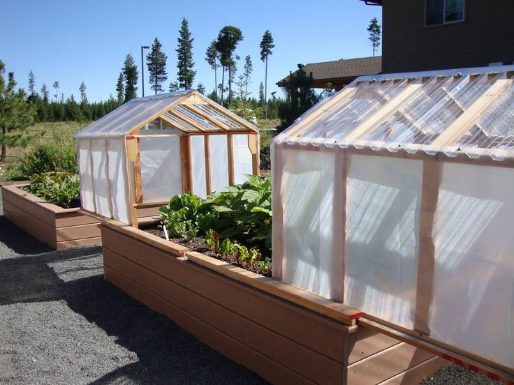 greenhouse over raised beds   Mini-greenhouses or raised beds? Both!
