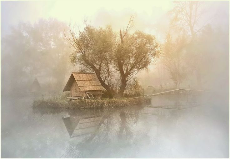 Serene shot from my hometown lake
