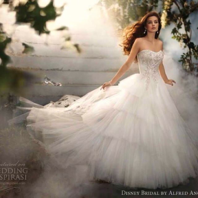 Fancy Cinderella Dress from the Disney Fairy Tale Wedding Collection by Alfred Angelo Dress with a Semi Cathedral train
