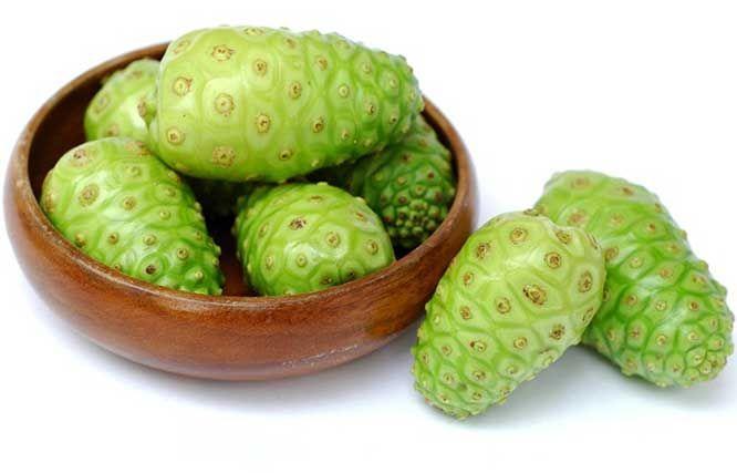 Tanaman Obat Untuk Mengatasi Kolesterol Anda