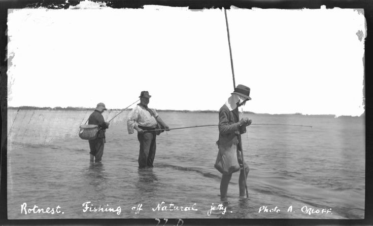 111489PD: Fishing off Natural Jetty Rottnest, 1920s. http://encore.slwa.wa.gov.au/iii/encore/record/C__Rb2193045__SFishing%20off%20Natural%20Jetty%2C%20Rottnest__Orightresult__U__X6?lang=eng&suite=def