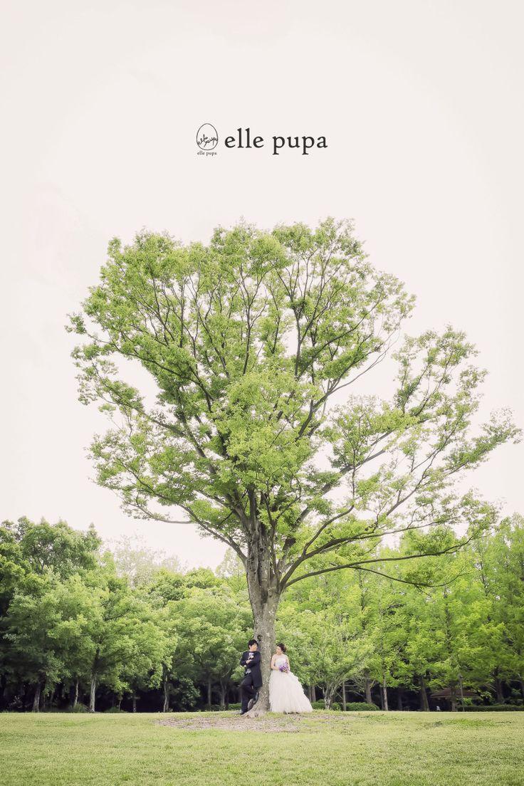 太陽の塔を眺めてat万博記念公園 |*ウェディングフォト elle pupa blog*|Ameba (アメーバ)