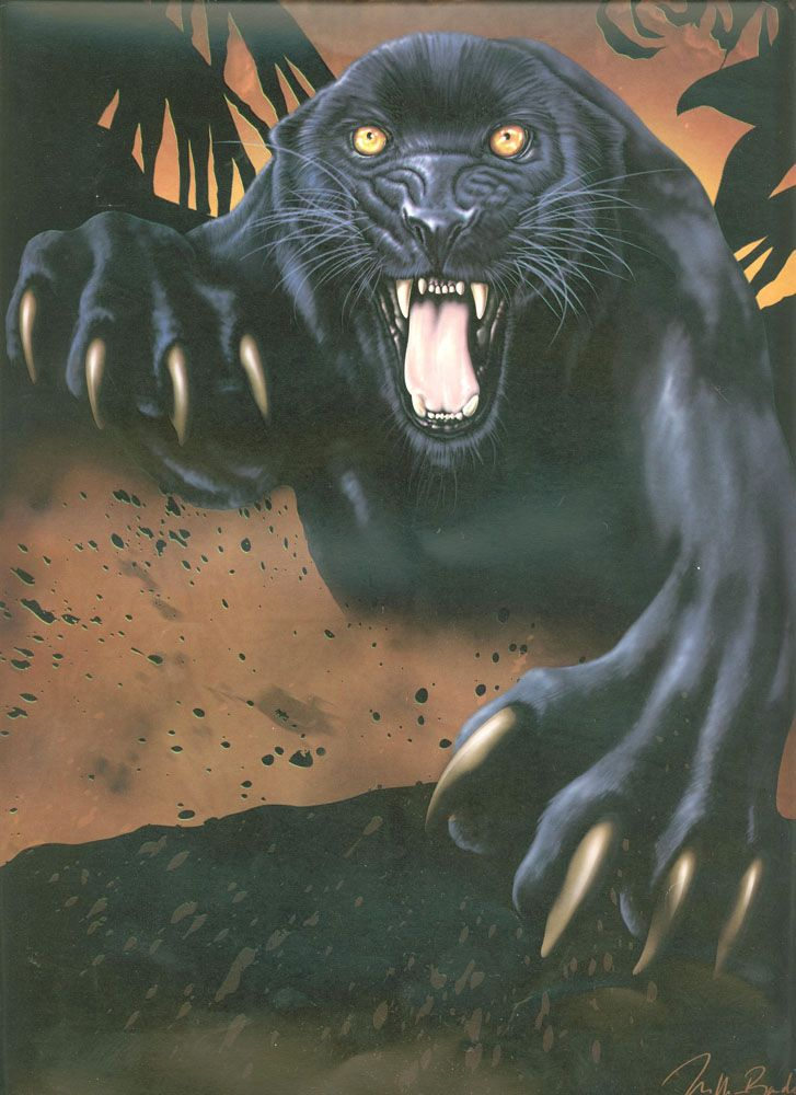 Black Panther Attack