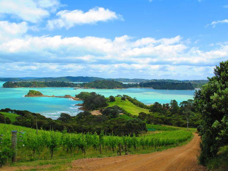 Waiheke Island, short ferry from #Auckland #NewZealand #Wine http://www.mydestination.com/auckland/6183098/waiheke-island