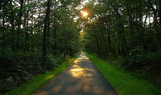 The Cape Cod Rail Trail #sothebysliving #capecod If you see an image that is posted in error, please let us know and we will remove it.  Thank you.