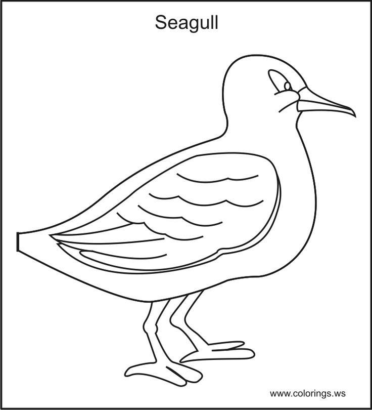 Free Seagul Kids Colorings Pages You Can Print And Color