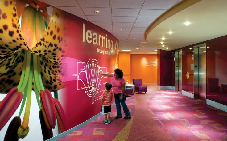 Children's Healthcare of Atlanta - Stanley Beaman & Sears: interior design, environmental graphics, pediatric, healthcare, children's, hospital