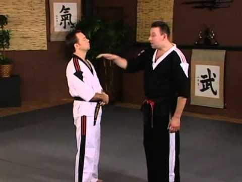 best jiu jitsu dvd instructional