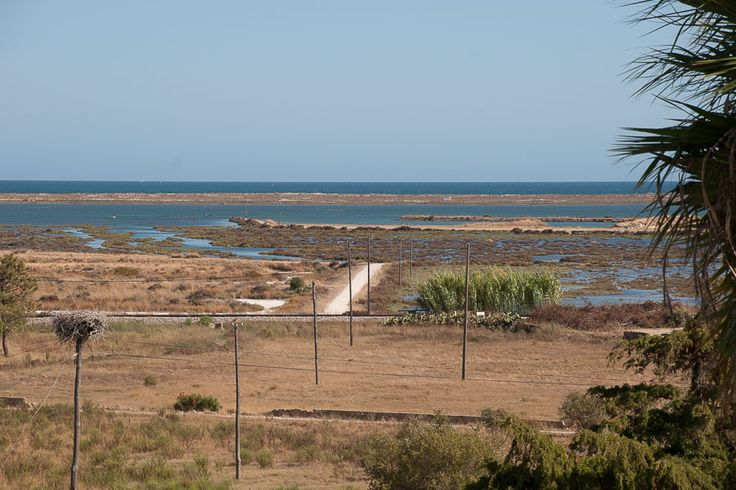 View from the terrace of Oriole House in Casa Flor de Sal, Moncarapacho, Ria Formosa Natural Park, Algarve, Portugal