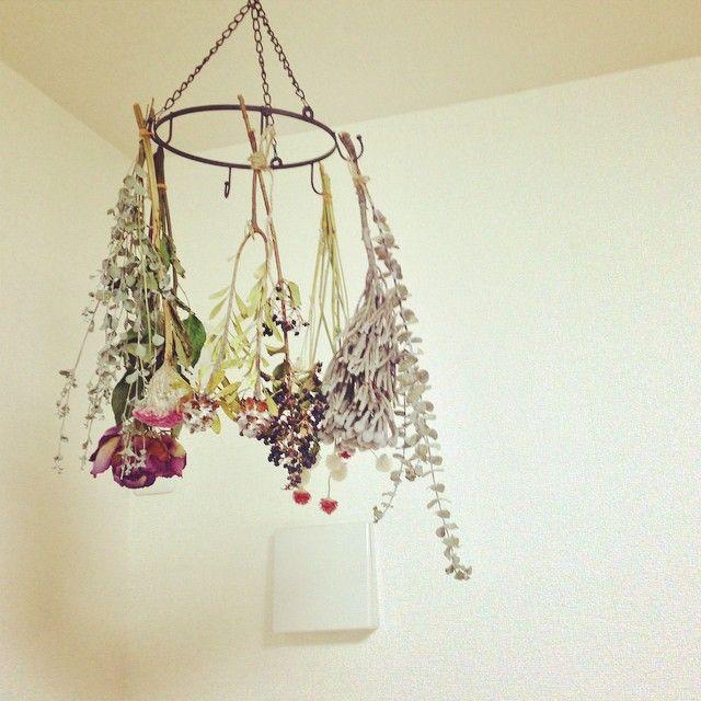 吊るすだけ♡セリアの「アイアンサークルフック」活用アイディア - Locari(ロカリ)