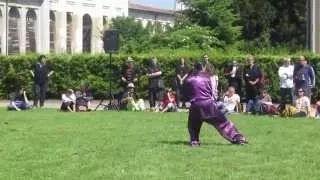 Chen Style Taiji Sword. Master G. Paterniti.