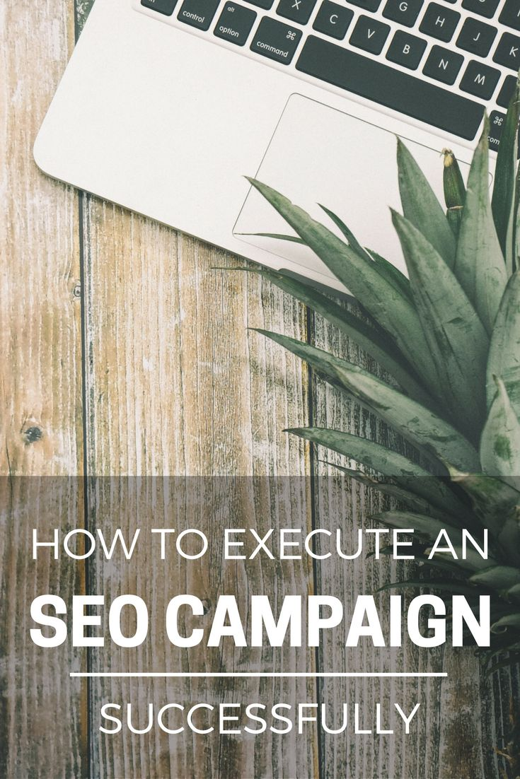 Are you new to SEO and need some help with running a successful campaign? Read our step-by-step guide on how to execute an SEO campaign successfully: https://www.two.digital/blog/how-to-execute-an-seo-campaign-that-works