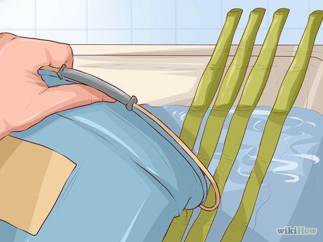 Imagen titulada Bend Bamboo Step 1
