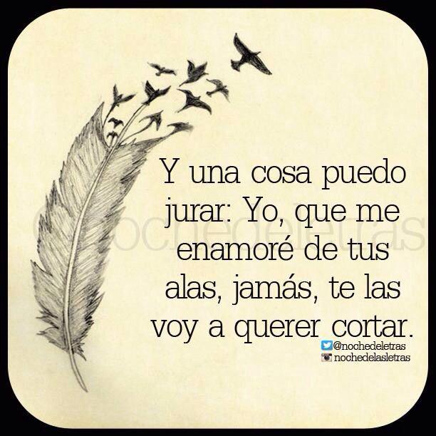 〽️ Yo, que me enamore de tus alas, jamás te las voy a querer cortar.