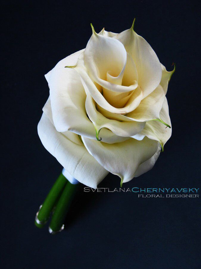 Composite bouquet of calla lilies