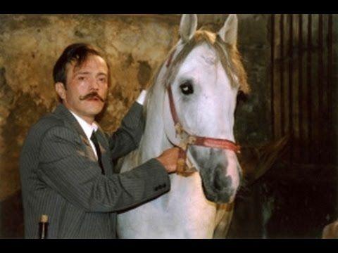 Фильмы о лошадях. РЫСАК (2005)
