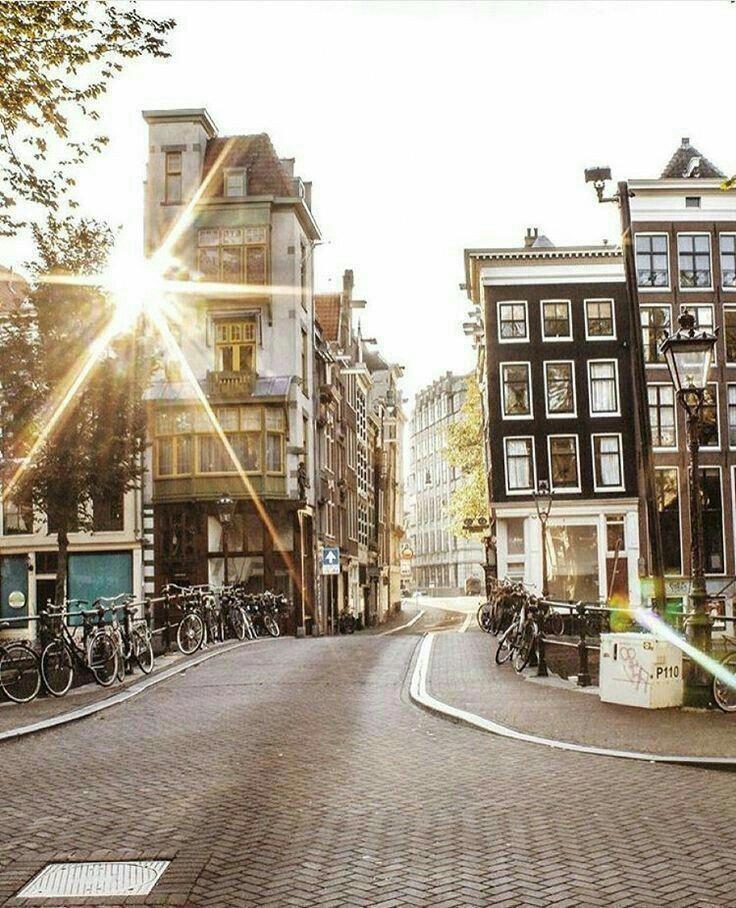 Sia la funivia che la città sono utili per il tuo ultimo viaggio ad Amsterdam. Thes …