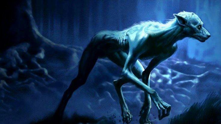 Werewolf Prof Lupin Harry Potter Creatures Werewolf Harry Potter