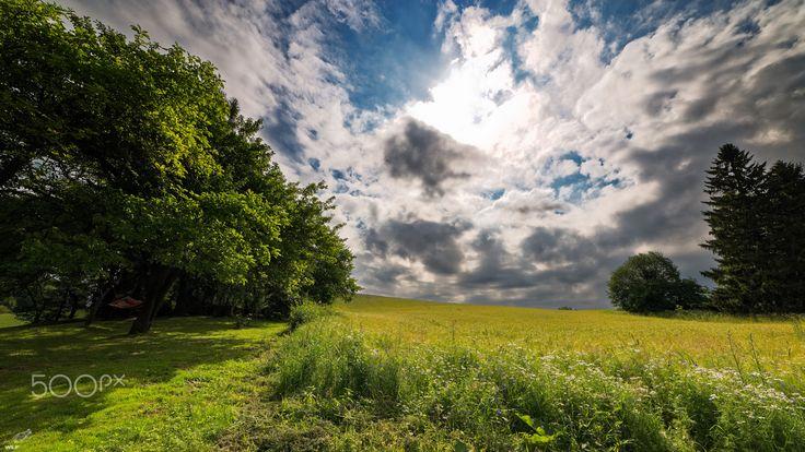 Cloudy Uphill - Hills near Czostków