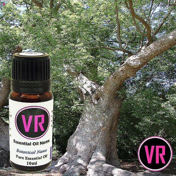 10ml Camphor White Cinnamomum camphora Essential by VandaRoseAroma