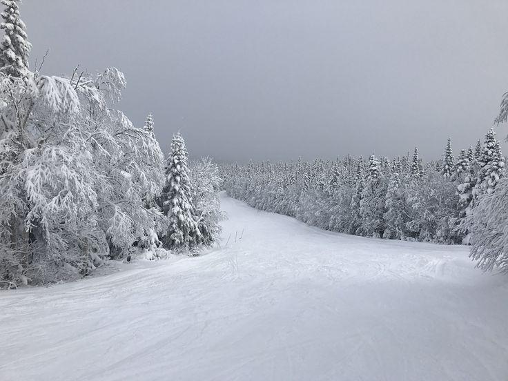 Snø, Ski, Fjell, Vinter, Canada, Summit, White, Snøhvit