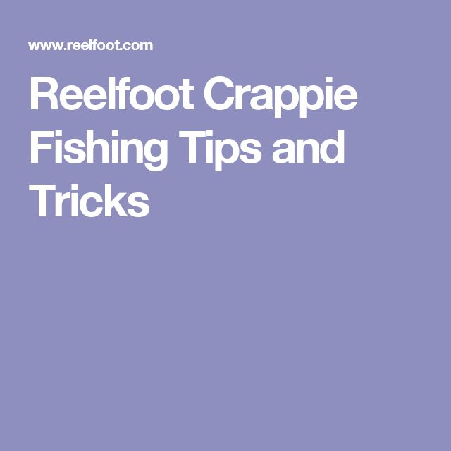 16 best images about fle fly fishing lures and products on for Fishing tips and tricks