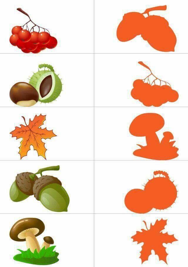 Stíny - podzim 1
