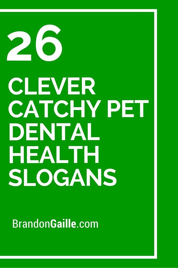 26 Clever Catchy Pet Dental Health Slogans