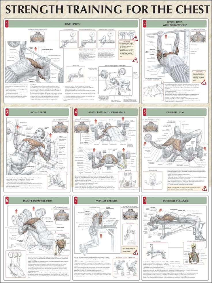 43 best Gym / planner images on Pinterest | Exercise workouts, Gym ...