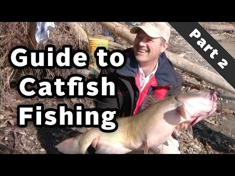 Catching Catfish Special Series - Guide to Catching Catfish - The Right Gear - Part 2 of 3 - YouTube