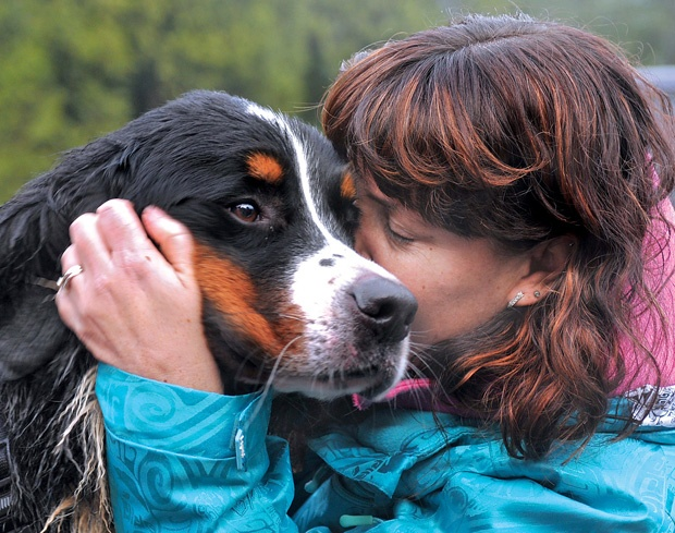 Ohly the Bernese mountain dog was reunited with owner Alyssa Goad Saturday after spending two weeks lost on Mount Seymour.