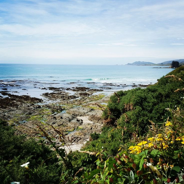 Rocky coast Catlins South Island NZ