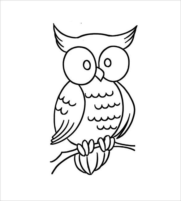 Owl Template Owl Template Animal Templates The Best Images About