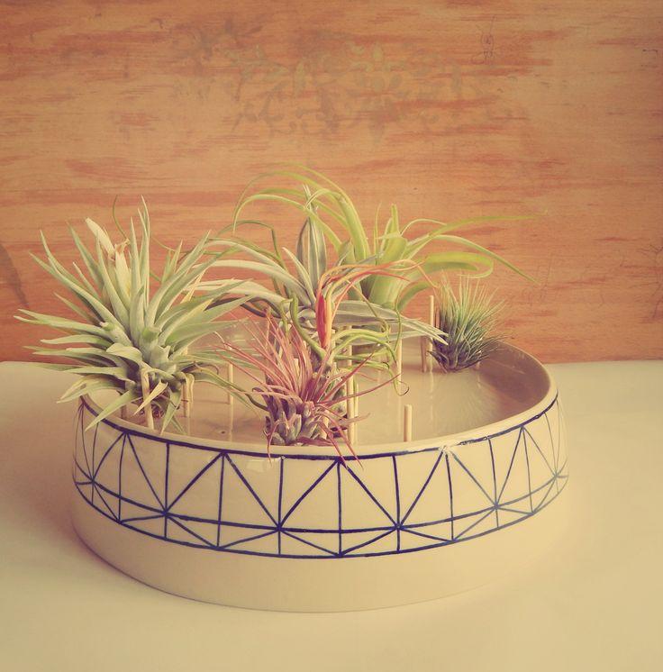 Aerium experiment with ceramics. Lovely airplants too. https://www.etsy.com/shop/Aerium www.facebook.com/aerium.ro