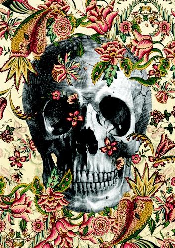 Smiling In The Garden, Dan HillierDan Hillier, Skull, Inspiration, Bones, Illustration, Flower Skull, Skeletons, Floral Skull, Skull Art