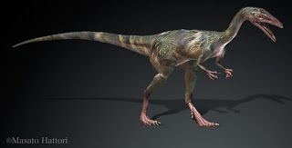 The compy was one of the smallest dinosaurs to ever exist