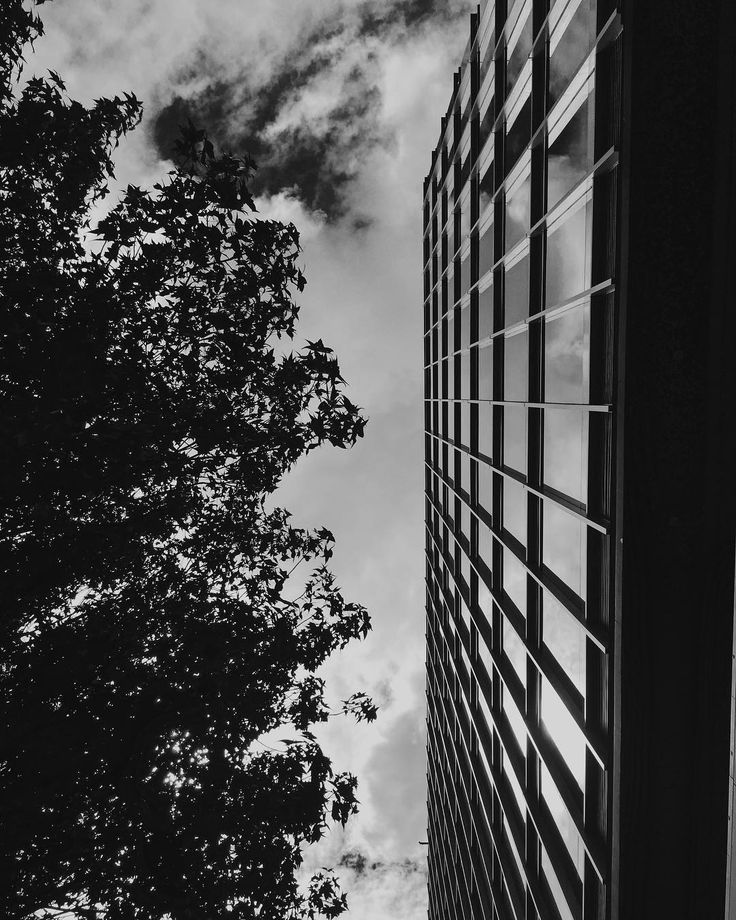 Every single day is different! #life #building #structure #bogota #glass #urban #city #nature #tree #vsco #sky #vscocam #blackandwhitephoto #bestoftheday #botd