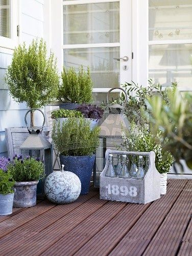 old milk bottles, potted herbs and lanterns