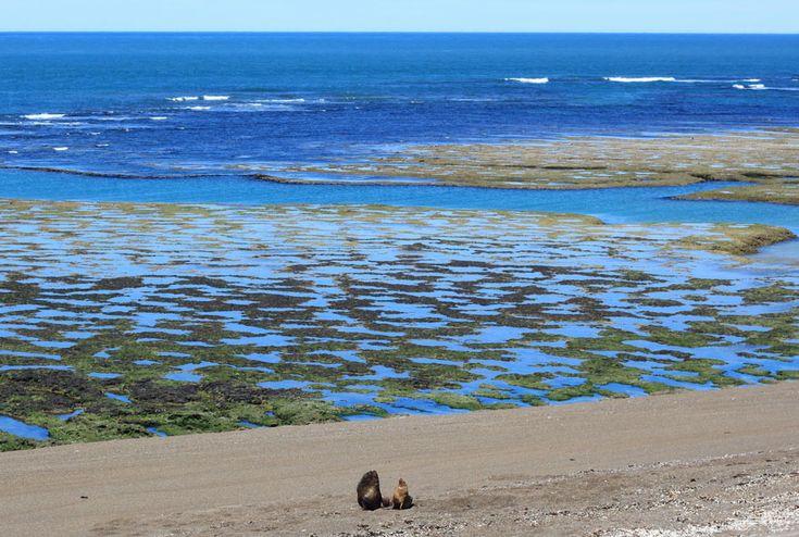 Lugares turisticos de Argentina Peninsula Valdes