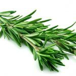 10 Common Herbs You Should Know and Use