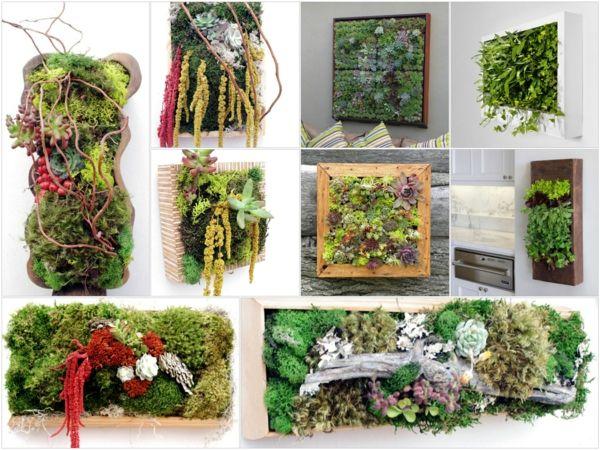 Blumendekoration: lebendige Wanddekoration aus Blumen und Pflanzen