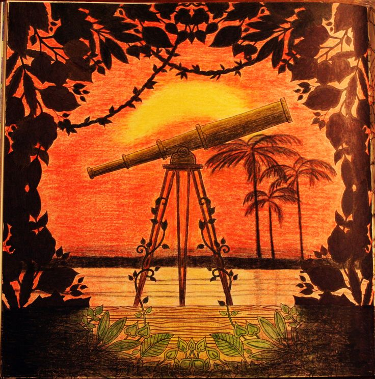 Johanna Basford Enchanted Forest Telescope Palm Trees silhouette primacolor premiere coloring