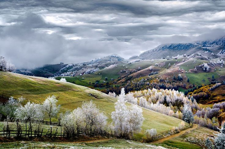 Top Shot: Winter is Coming  Top Shot features the photo with the most votes from the previous day's Daily Dozen. TheDaily Dozenis 12 photos chosen by the Your Shot editors each day from thousands of recent uploads. Our community has the chance to vote for their favorite from the selection. Whitefrost over Peştera village in Romania. Photograph byEduard Gutescu